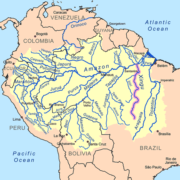Rio Xingu – die Heimat der L46 Welse